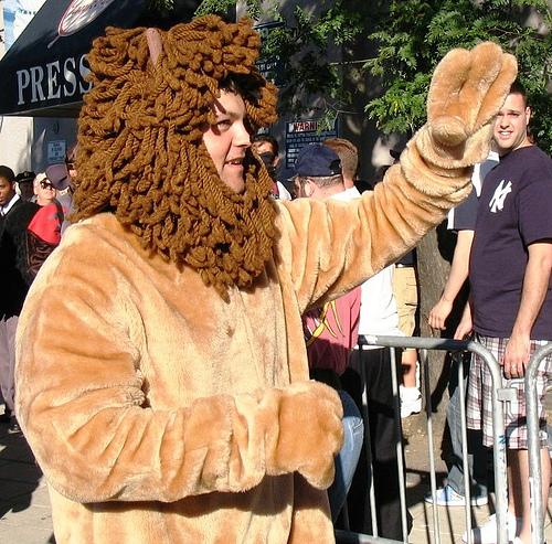 joba.lion.jpg