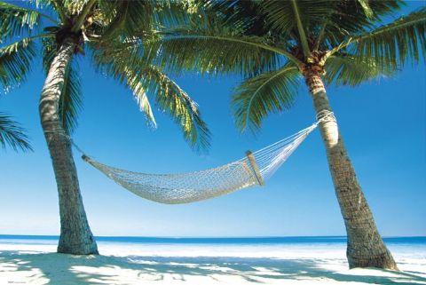 hammock-3-l.jpg