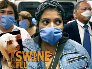 swine.flu.jpg
