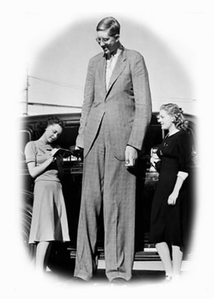 tall_man-1.jpg