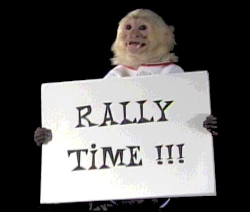 rally1.jpg