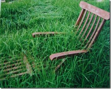 watching.grass.jpg