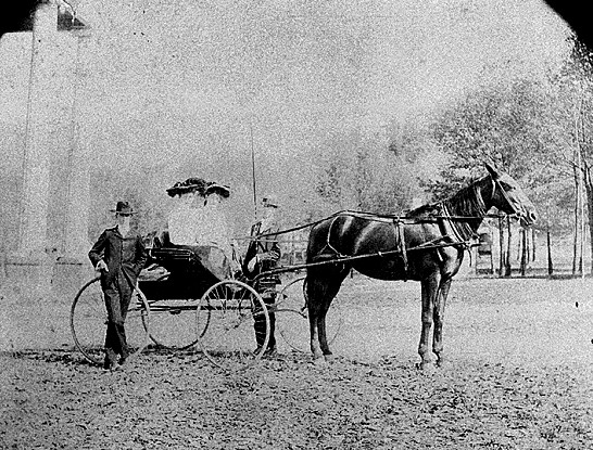 horse_and_buggy.jpe.jpeg