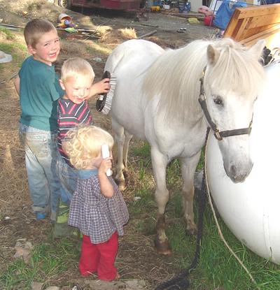 kids_horse.jpg