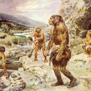 Neanderthals-Could-Cope-with-Warming-Climate-2.jpg