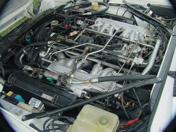 under.hood.large.jpg