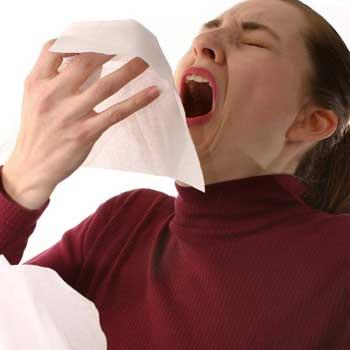 the-sneeze.jpg
