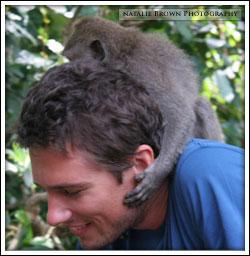 monkey-on-back.jpg