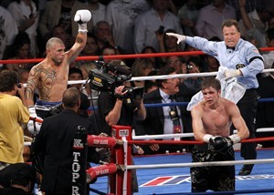 box_foreman_cotto-3568638.jpg