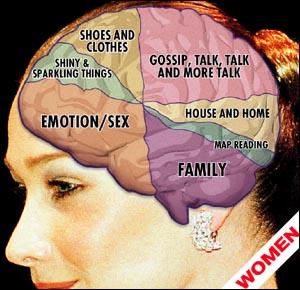 woman's brain.jpg